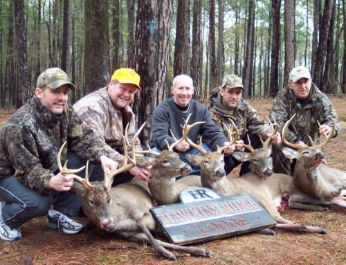 Whitetail Deer Hunting Alabama outfitter