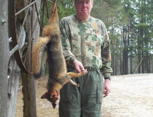 Hawkins Ridge hunts