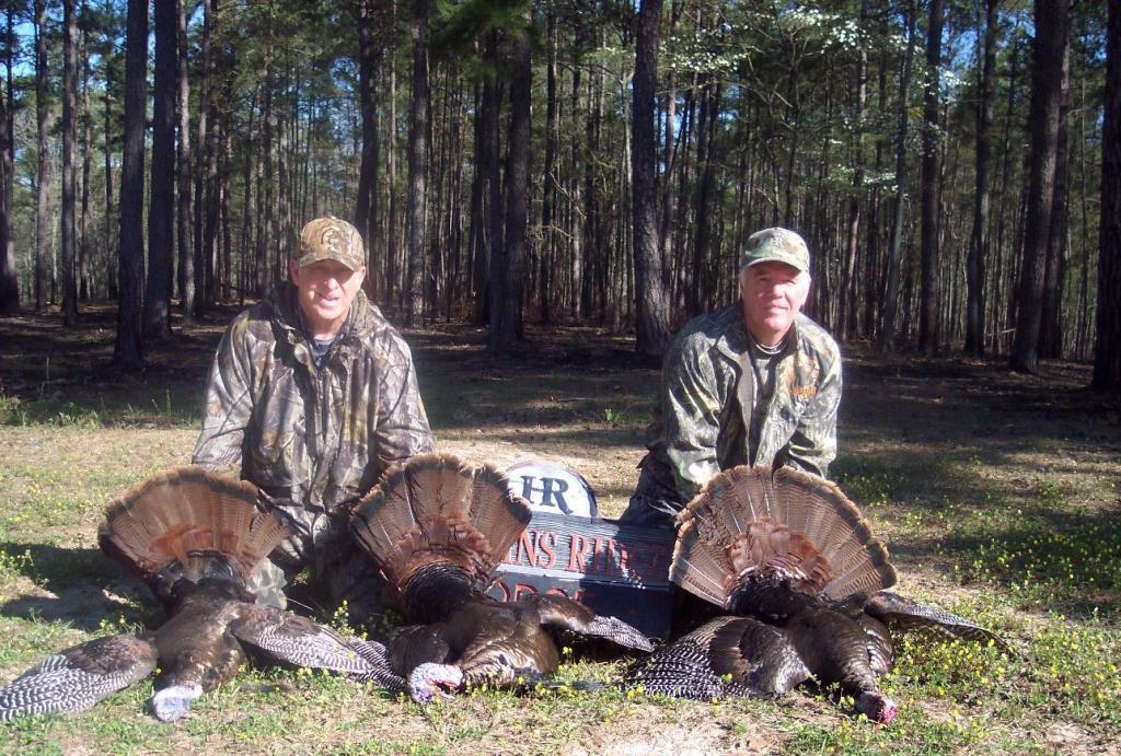 wild turkey hunting