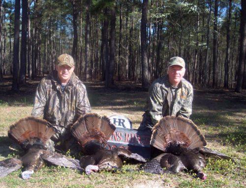 Turkey successful hunt